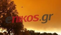 Νέες αποκαλύψεις για τον βασικό ύποπτο της καταστροφικής φωτιάς στην Εύβοια – Πού οδηγούν οι έρευνες της Πυροσβεστικής - BINTEO