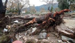 Ζημιές στην Σκιάθο από την κακοκαιρία – Πλημμύρισαν δρόμοι, καταστήματα και σπίτια
