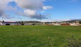 Α.Ο. Πυλίου: Ο κορωνοϊος… πρασίνισε το γήπεδο