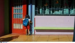 Κρίσιμη Κυριακή για δημοτικά σχολεία και νηπιαγωγεία – Τι λένε οι λοιμωξιολόγοι για το άνοιγμα (video)