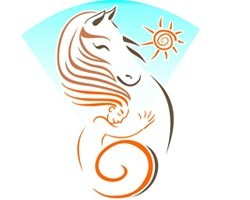 ERIKA'S HORSE FARM